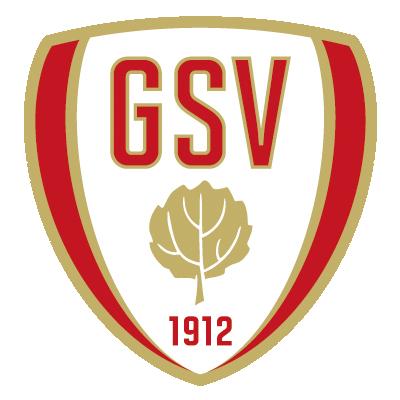 Großenasper Sportverein e.V. Faustball