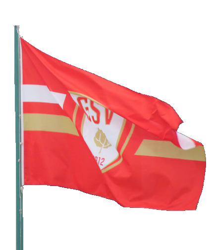 GSV_Flagge